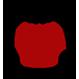 Icon - Main